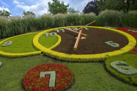 Flower-Clock-L-horloge-fleurie-